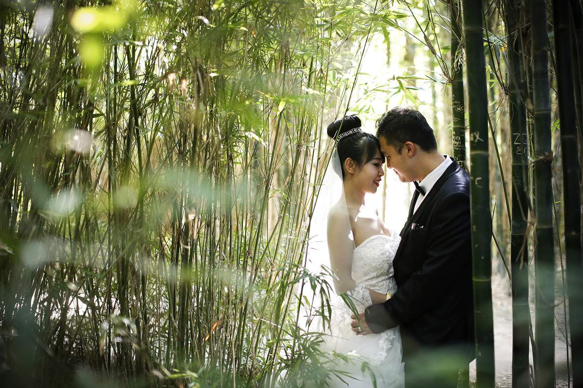 Real Weddings Melbourne: Weddings At Melbourne Zoo