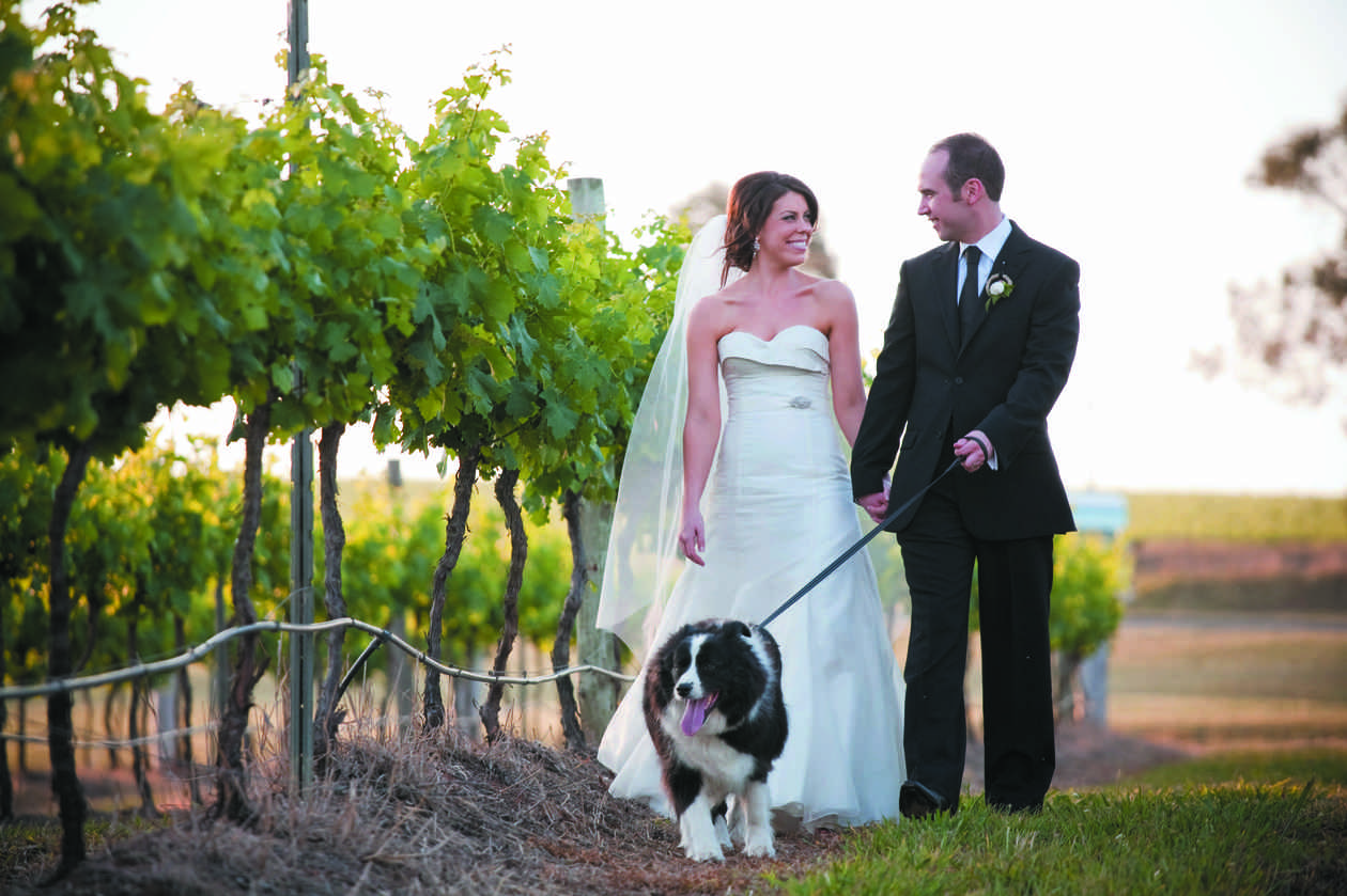 Serena and Andrew at Hungerford Hill Winery