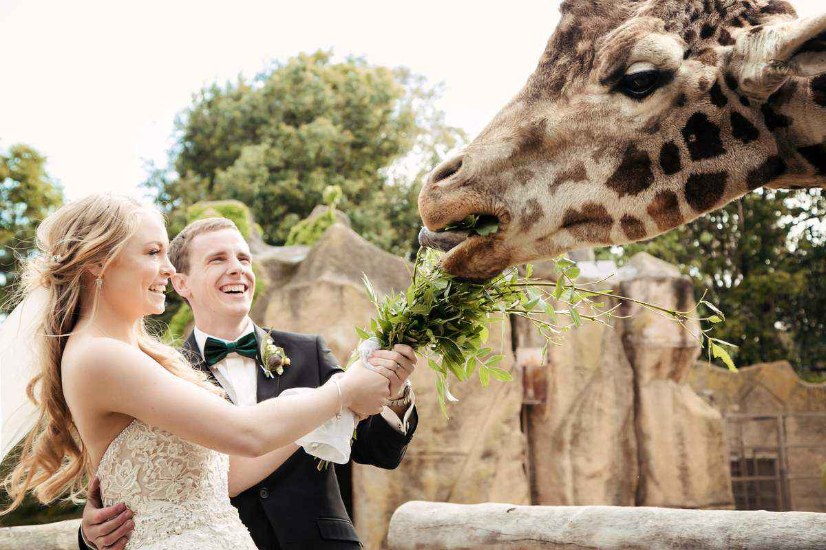 Best Wedding Venue in Melbourne - Melbourne Zoo Weddings