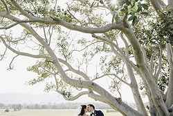 Weddings at Hunter Valley - Bimbadgen Estate at Real Weddings