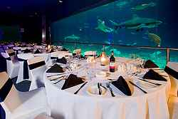 Sea World Gold Coast Weddings